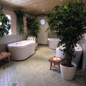 Trahteerin kylpylän ammeet | Baths in the spa of Trahteeri | Bad i spaet i Trahteeri | Бани в спа-центре Трахтеери